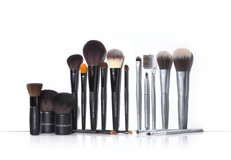 Picture for category Brushes